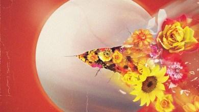 Photo of Kontras  – Die Happy Song