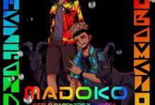 Photo of Stilo Magolide Drops Madoko Ft. Kwesta