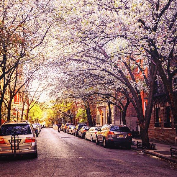 Lelegante West Village di New York  UBIQ NY