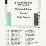 Concert Review: Topshelf Tour Featuring Field Mouse, Prawn, Diamond Youth, and A Great Big Pile of Leaves
