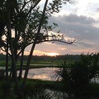 Bali Gathering Sunset Dinner & Single Electone Half Day