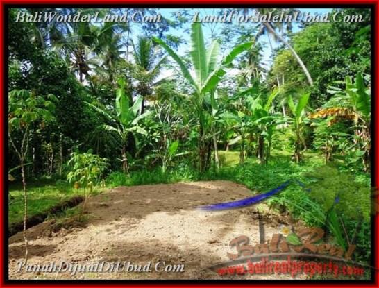 Exotic PROPERTY 1,000 m2 LAND FOR SALE IN Ubud Tegalalang BALI TJUB478