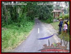 Beautiful PROPERTY Ubud Pejeng 3,200 m2 LAND FOR SALE TJUB484