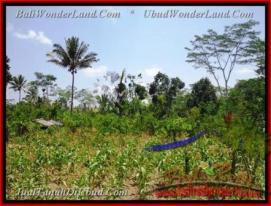FOR SALE Beautiful LAND IN Ubud Tegalalang TJUB451