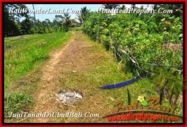 FOR SALE Affordable LAND IN Ubud Tampak Siring TJUB457