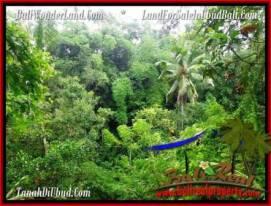 FOR SALE Beautiful PROPERTY LAND IN UBUD TJUB493