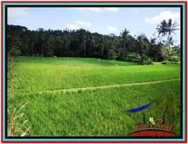 LAND SALE IN Ubud Tampak Siring BALI TJUB512