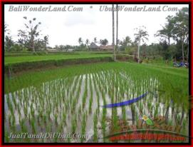 FOR SALE Magnificent LAND IN Ubud Tegalalang BALI TJUB423