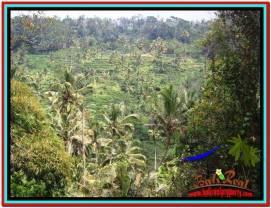 Affordable UBUD BALI 12,000 m2 LAND FOR SALE TJUB520