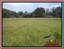 Beautiful 650 m2 LAND FOR SALE IN Ubud Tampak Siring TJUB522