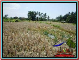 Beautiful UBUD LAND FOR SALE TJUB524