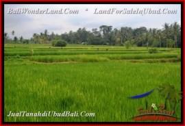 Magnificent 1,500 m2 LAND SALE IN Ubud Pejeng TJUB541