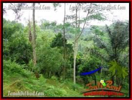 Affordable PROPERTY 4,040 m2 LAND FOR SALE IN Ubud Tegalalang TJUB555