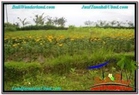 Affordable PROPERTY 715 m2 LAND IN Ubud Tampak Siring FOR SALE TJUB557