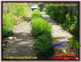 Beautiful PROPERTY LAND SALE IN UBUD TJUB568