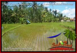 Exotic Ubud Pejeng BALI LAND FOR SALE TJUB652