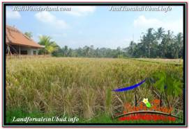 FOR SALE Exotic PROPERTY 2,000 m2 LAND IN UBUD TEGALALANG TJUB669