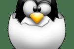 Feliz 22 cumpeaños Linux: 5 anécdotas curiosas
