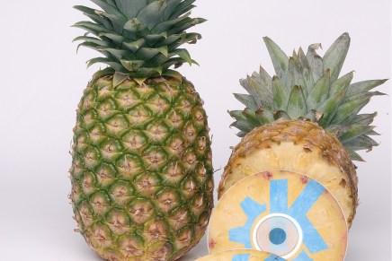 KDE recibe una donación de 200.000 dólares desde la Pineapple Fund