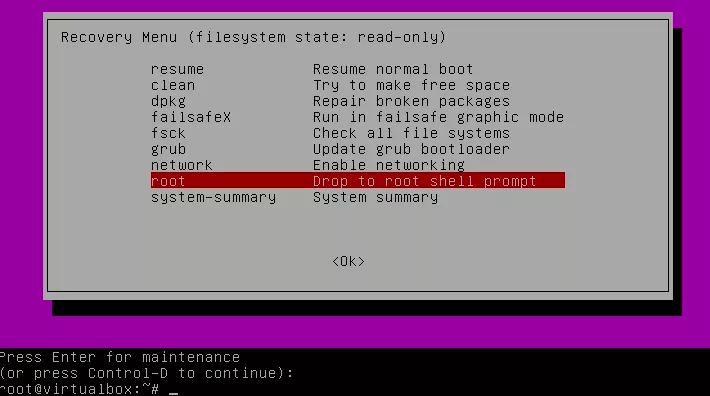 How to Reset Ubuntu Password 5