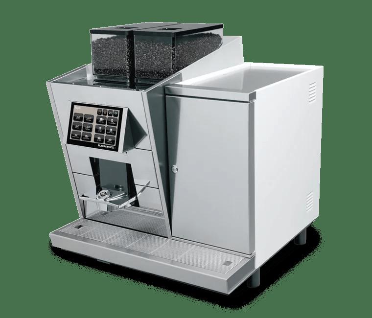 BLACK&WHITE3 CTM1 (with fridge)