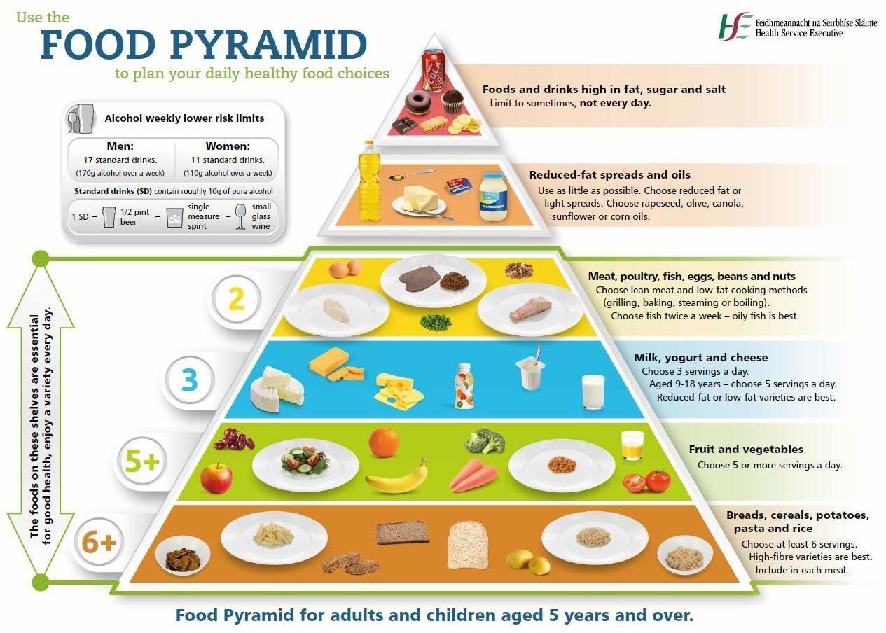 new food pyramid diagram boat switch panel wiring related keywords and suggestions for irish