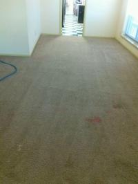 Landlord Carpet Cleaning  Should we clean it or replace ...