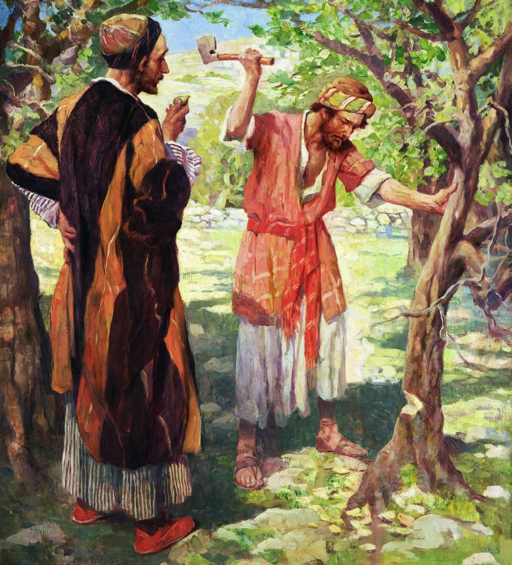 Lessons From the Parables The Fig Tree A Lesson in the