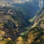 لبنان الاخضر