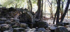 أطلال دير آبيا في الحويش لا تزال صامدة لكنها مهددة بالزوال اذا استمر الإهمال