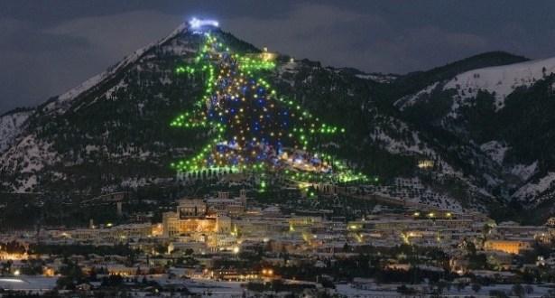 البابا يضيء أكبر شجرة ميلاد في العالم بكبسة إلكترونية على التابلت!