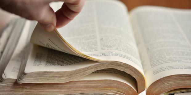 """إنجيل اليوم: """"مَنْ لا يَدخُلُ حَظيرَةَ الخِرافِ مِنَ البابِ…فهوَ سارِقٌ ولِصٌّ"""""""