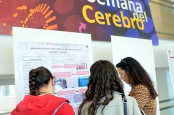 Tres personas recorren la exposición de pósteres de investigación de la Semana del Cerebro