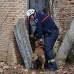 Efectivos de la unidad de rescate canino encuentran una víctima