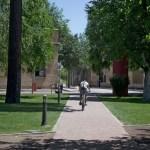 A nivel mundial, la UCLM ocupa la posición 210 entre un total de 360 universidades de 62 países