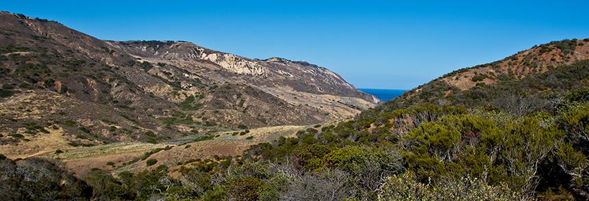 Santa Cruz Island. Image credit: Lobsang Wangdu