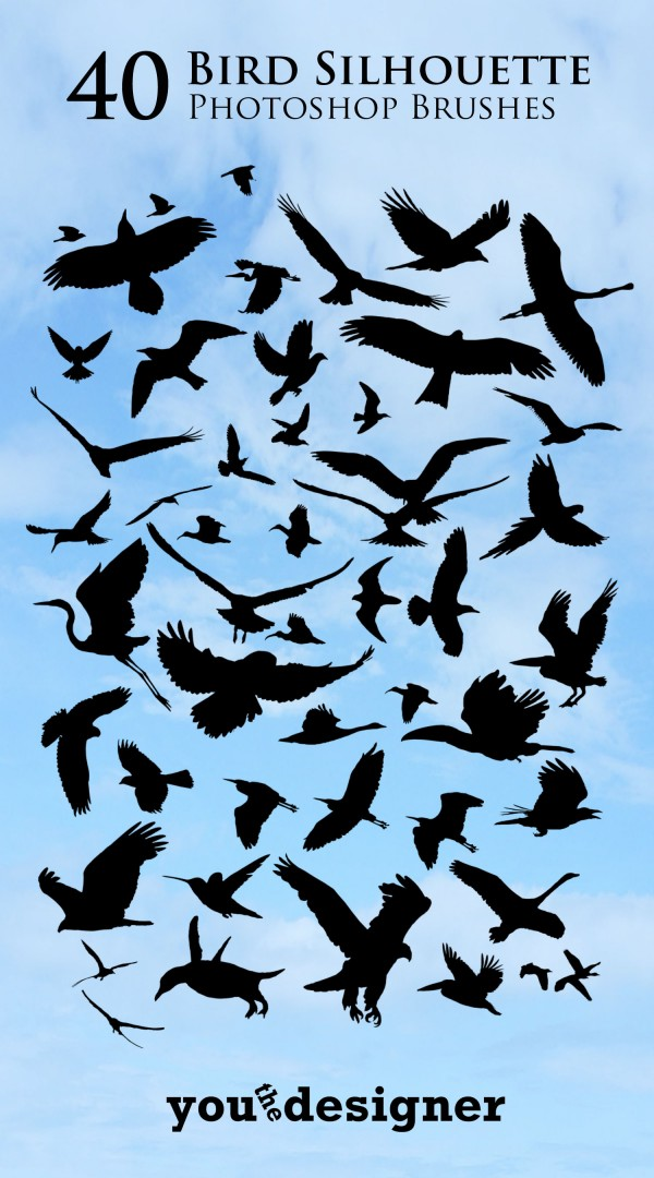 40 Bird Silhouette Photoshop Brushes by You The Designer