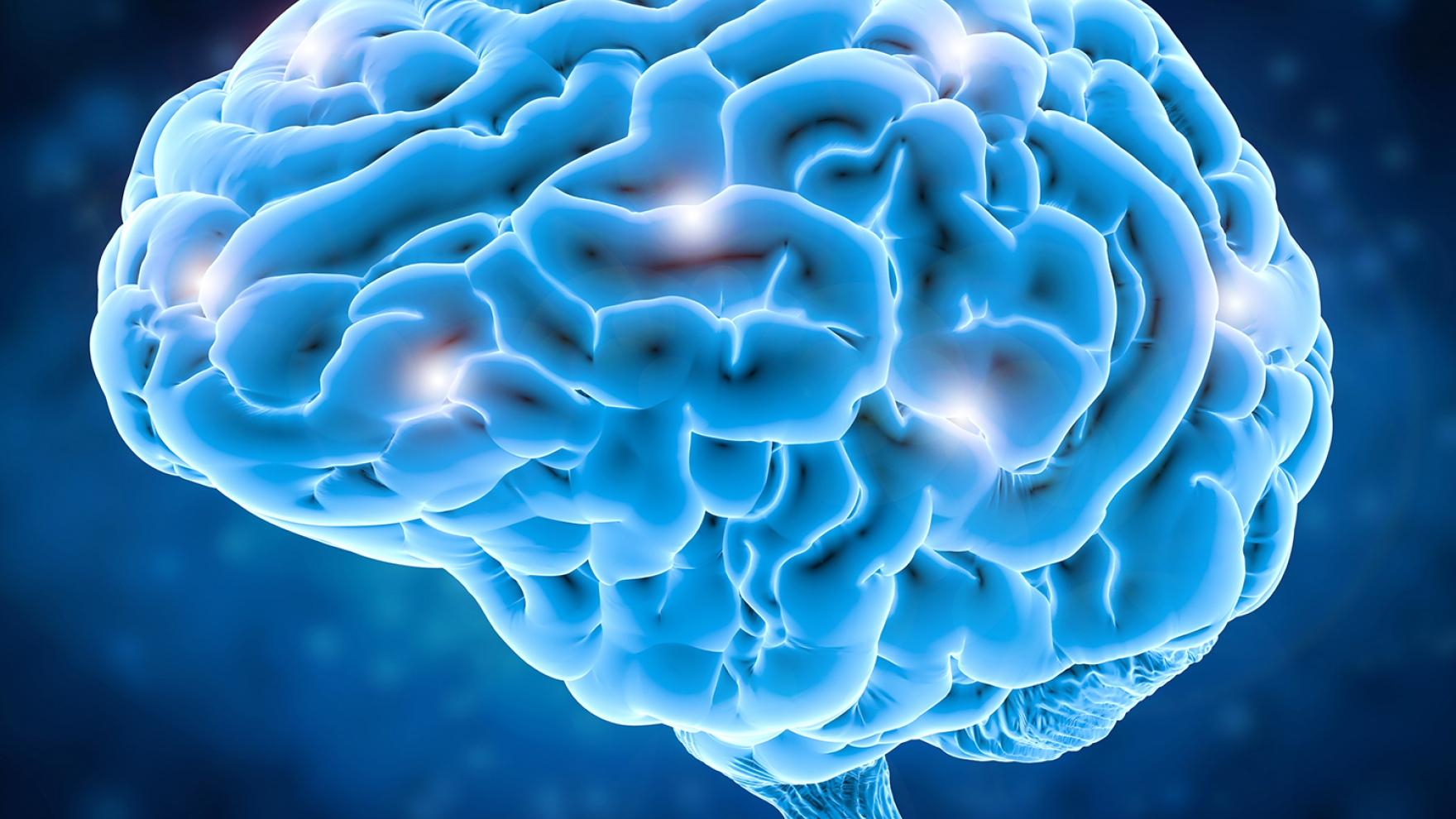 Study Reveals Brain Activity Patterns Underlying Fluent Speech