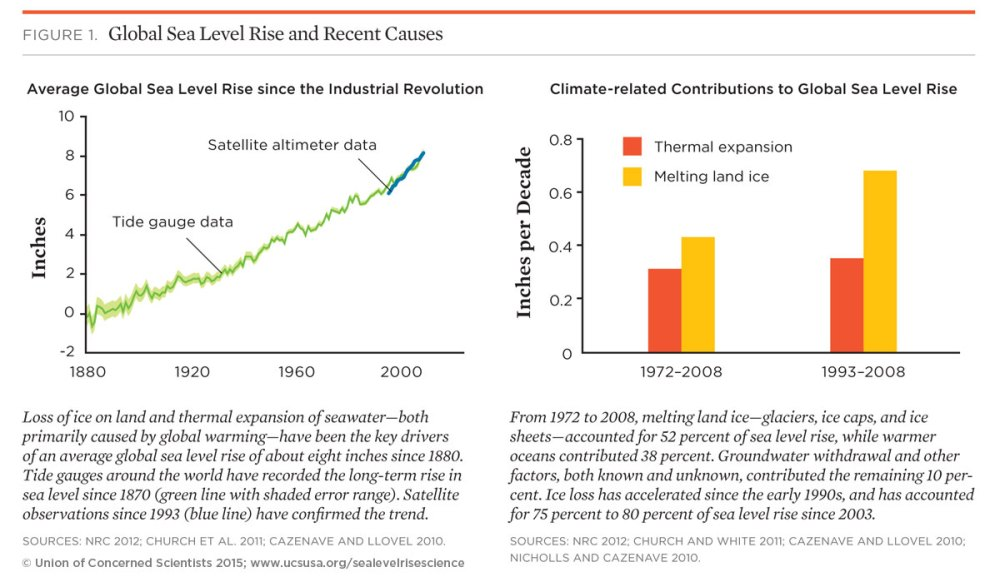 medium resolution of global warming is the primary cause of current sea level rise