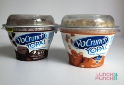 dannon greek yogurt | LunchItPunchIt.com