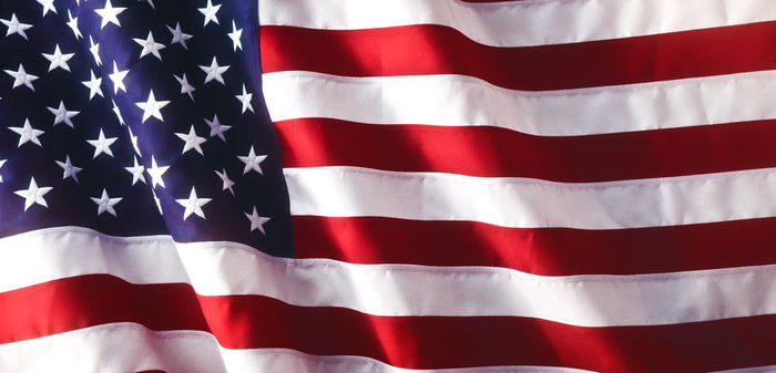 Image result for american flag waving