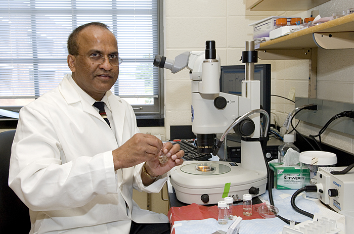 Naik honored by Scientists of Indian Origin in America