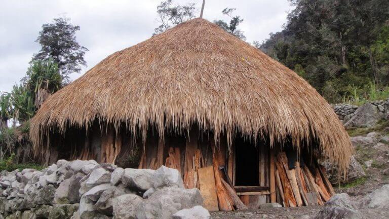 Apa itu rumah adat papua