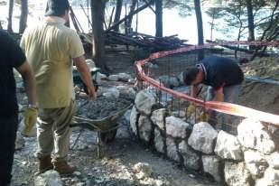 timberland korporativno volontiranje Bonsai 3