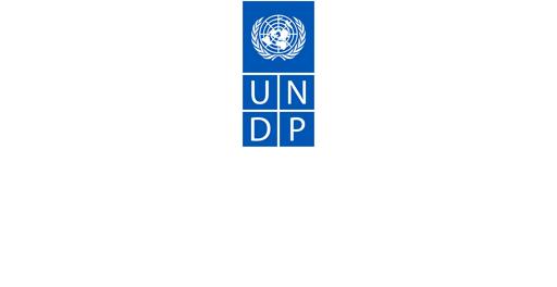 http://www.undp.org