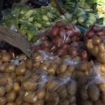 Pinar de Campoverde