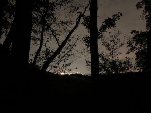 夜景が美しい