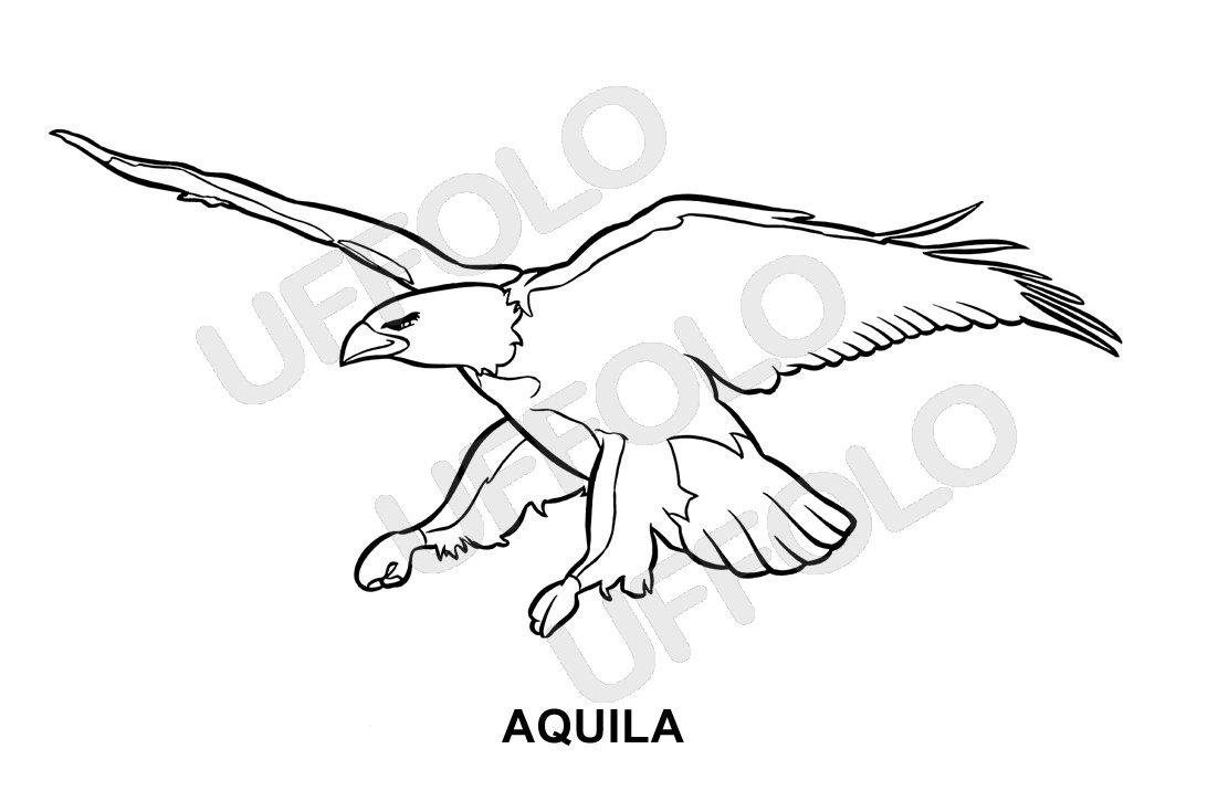 Disegni Di Uccelli QM51  Regardsdefemmes
