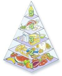 Piramide alimentare dei bambini: educarli a tavola | Uffolo