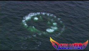 大海蛇謎團事件_ufo110線索網